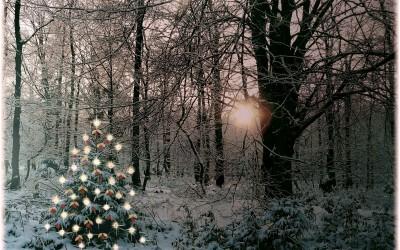 God jul og godt nytår fra Blaabjerghus